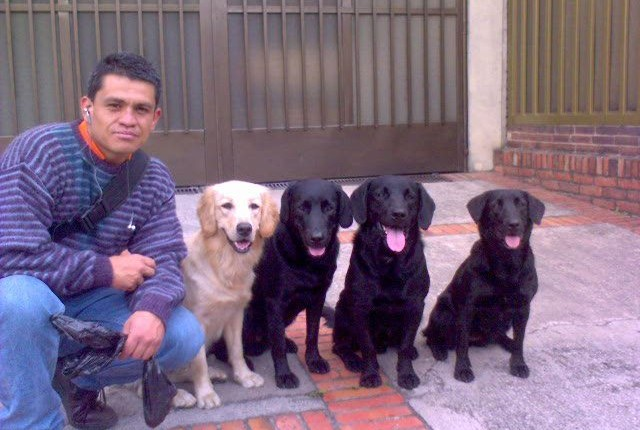 Los animales son infieles